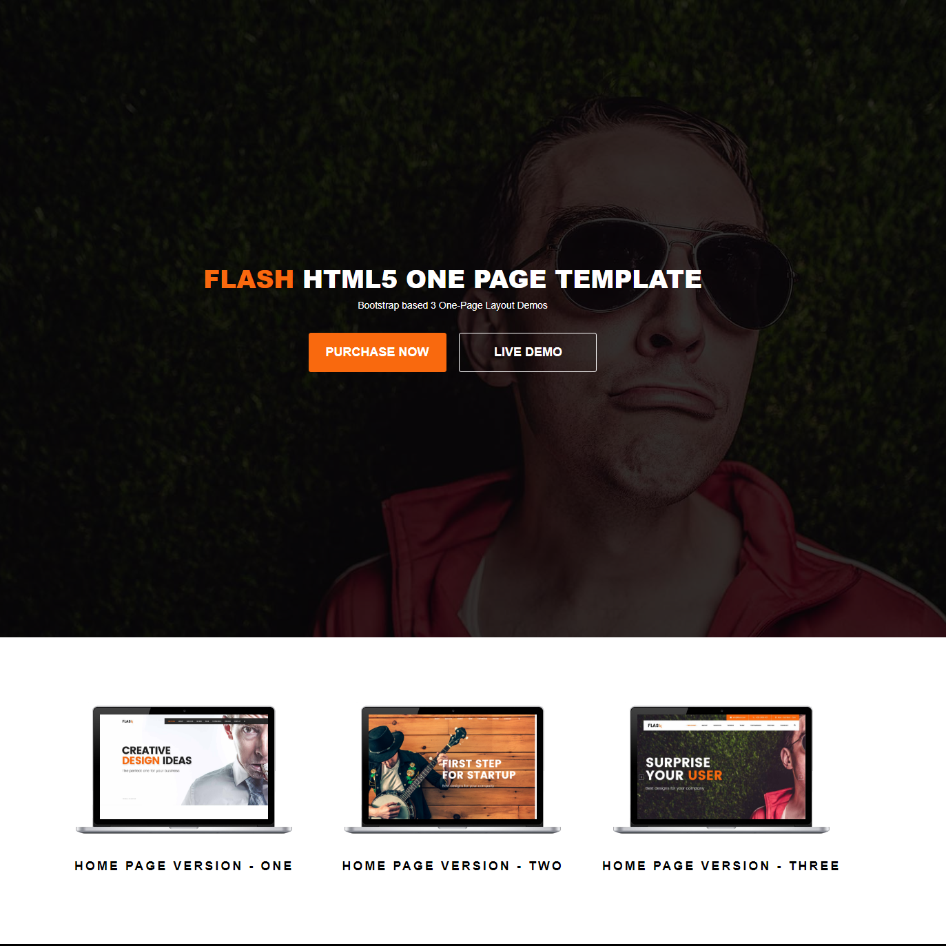 HTML5 Bootstrap Flash Templates